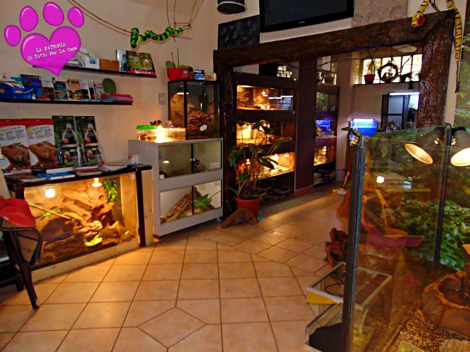 la fattoria di garessio cn negozio di animali home